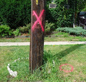 noughtsandcrosses (1)