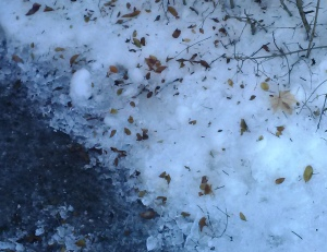 frost quake ice
