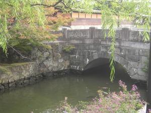 Japan-Kurashikicarp