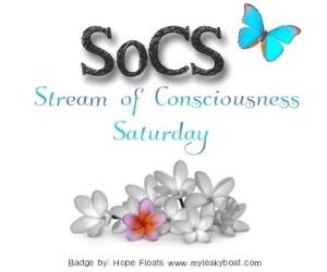 SoCS badge 2015