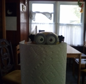 Minion stuck in a roll of paper towel