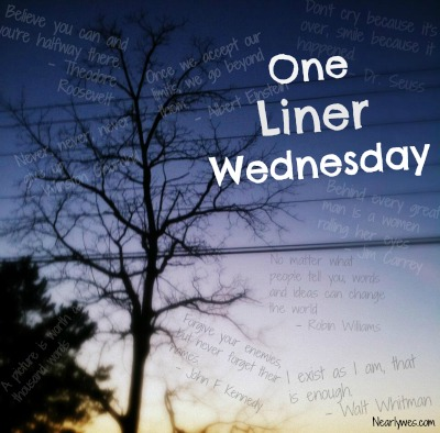 #1linerWeds badge by nearlywes.com