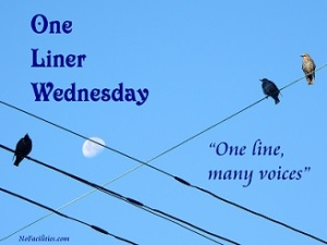 One Liner Wednesday -  Sunshine