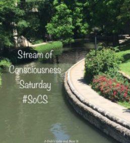 SoCS badge 2017-18